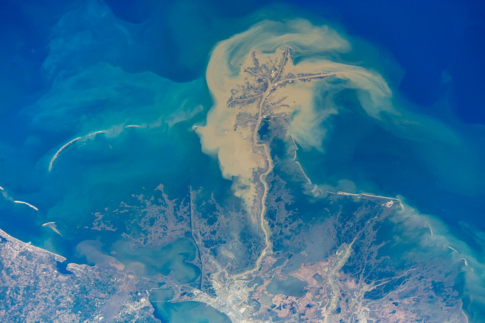 Creative Highlights World STYLELOCATIONA massive cloud of particles from the mouth of the Mississippi River, emptying in