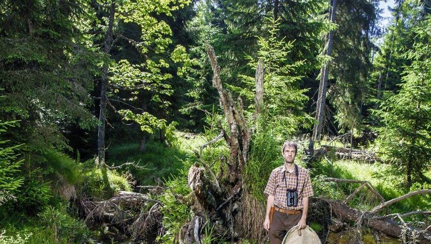 Zoologe Müller im Nationalpark Bayerischer Wald