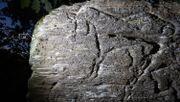 Erstmals Felsgravuren aus der Altsteinzeit in Deutschland entdeckt