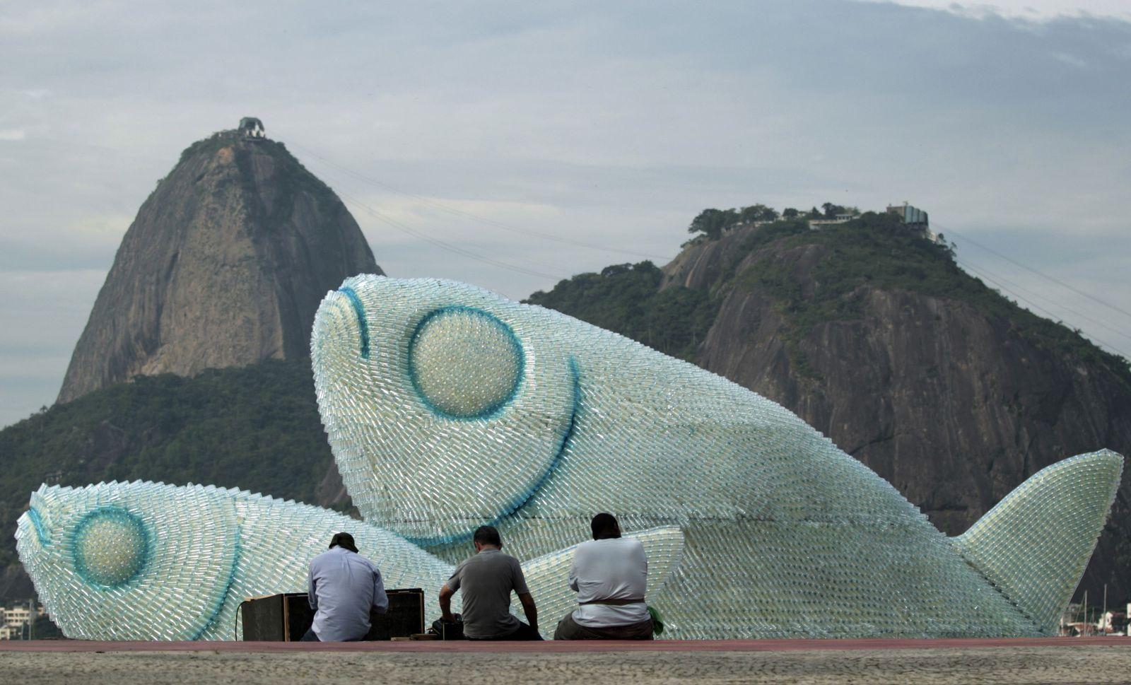 Rio Klimagipfel Fisch Kunst