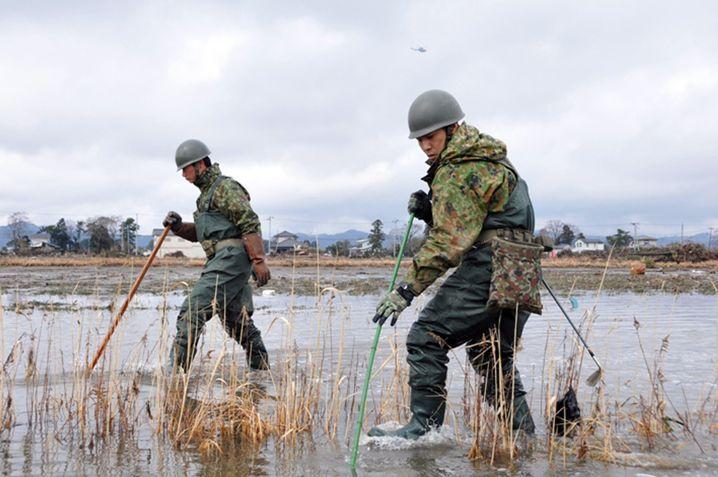 Einsatz in der Präfektur Miyagi: Sucharbeiten im Tsunamigebiet