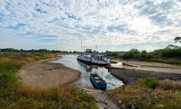 """Die Elbfähre """"Tanja"""" überquert auch bei Niedrigwasser noch den Fluss"""