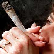 Gefährliche Droge oder Alkohol-Ersatz? Joint aus Cannabis