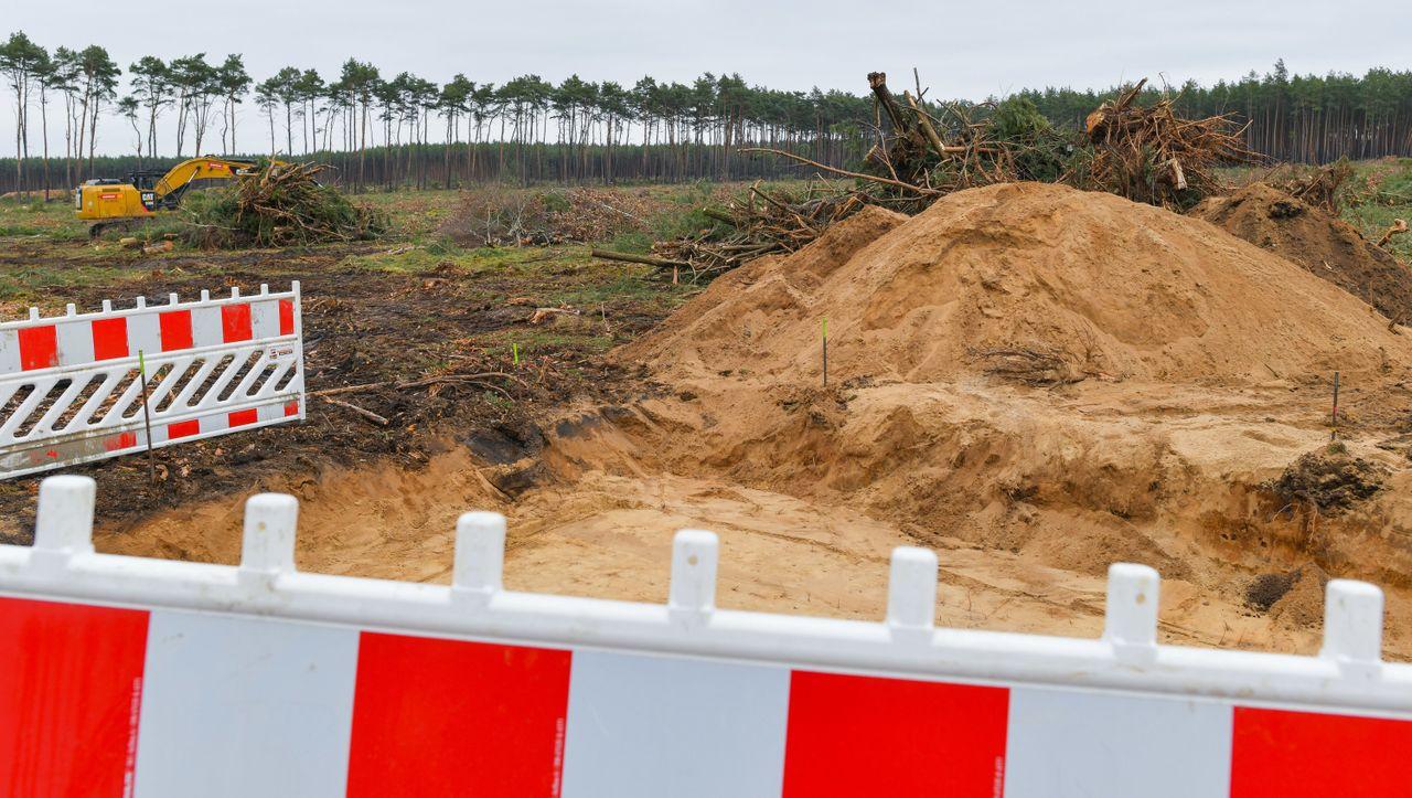 Tesla-Werk in Grünheide: Waldrodungen dürfen fortgesetzt werden - DER SPIEGEL - Wirtschaft