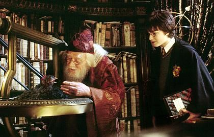 """Zauberer Dumbledore, Potter (im Film """"Harry Potter und die Kammer des Schreckens""""): """"Liebe kann blind machen"""""""