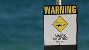 Surfer stirbt nach Haiangriff vor australischer Küste