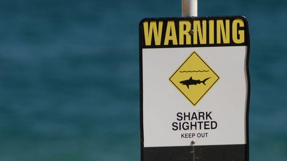 Hai-Warnschild an einem Strand in Australien