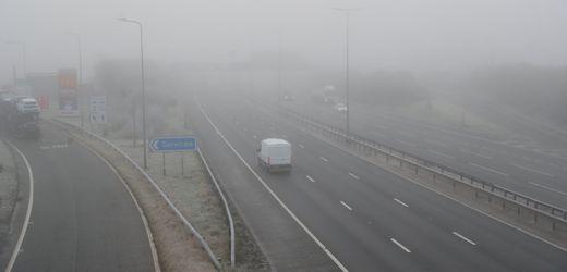 Brexit-Folge: Fast Hälfte der Lkw verlässt Großbritannien ohne Ware