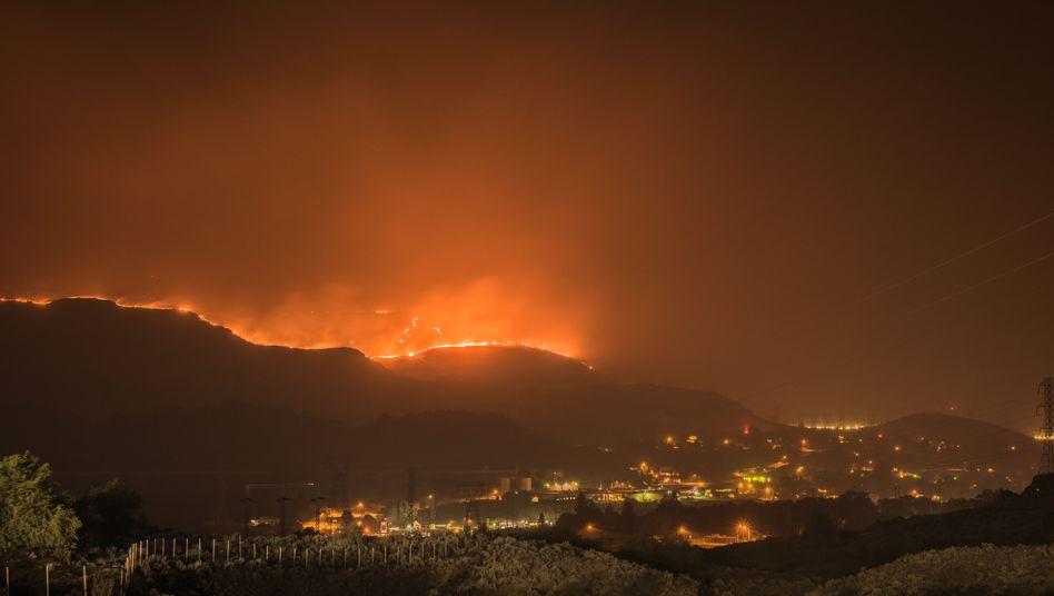 Brände an der US-Westküste: 2020 werden sich viele Branchen grundlegend wandeln müssen