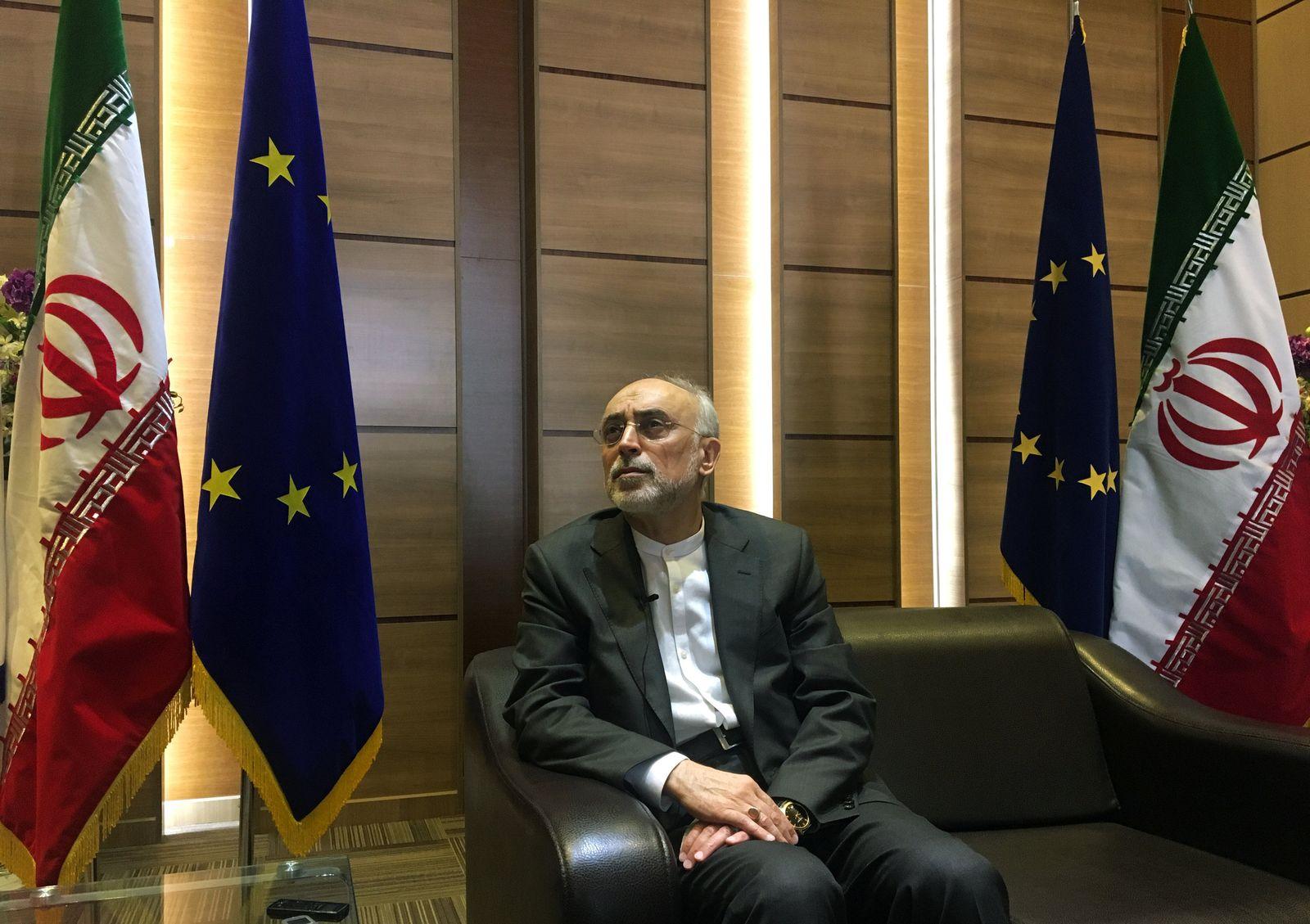 Iran Ali Akbar Salehi