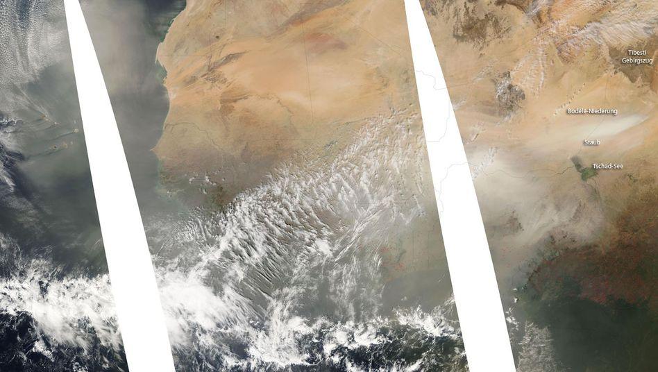 Bodélé-Niederung in der Sahara: Quelle des Düngers für Südamerika.