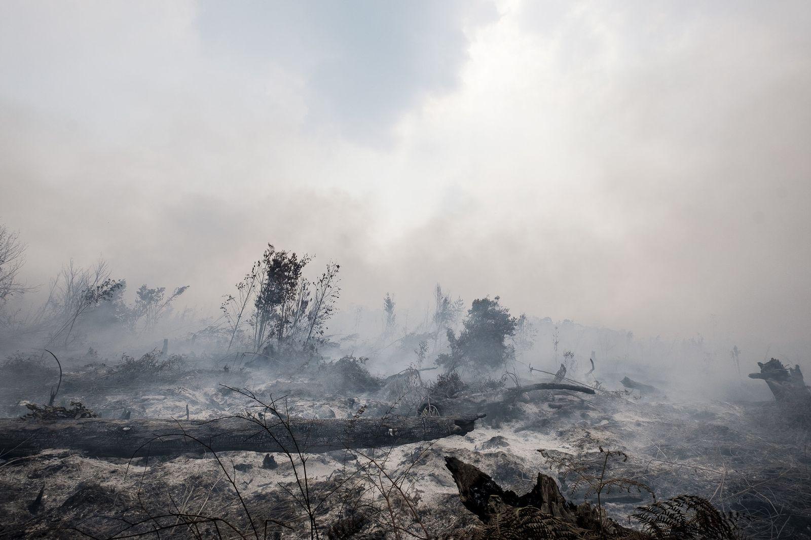Waldbrände in Indonesien