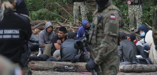 Migration über Belarus: Polens Grenzschützer nehmen 14 Kuriere fest
