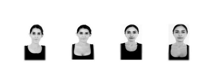 Diese Bilder wurden in der Studie verwendet