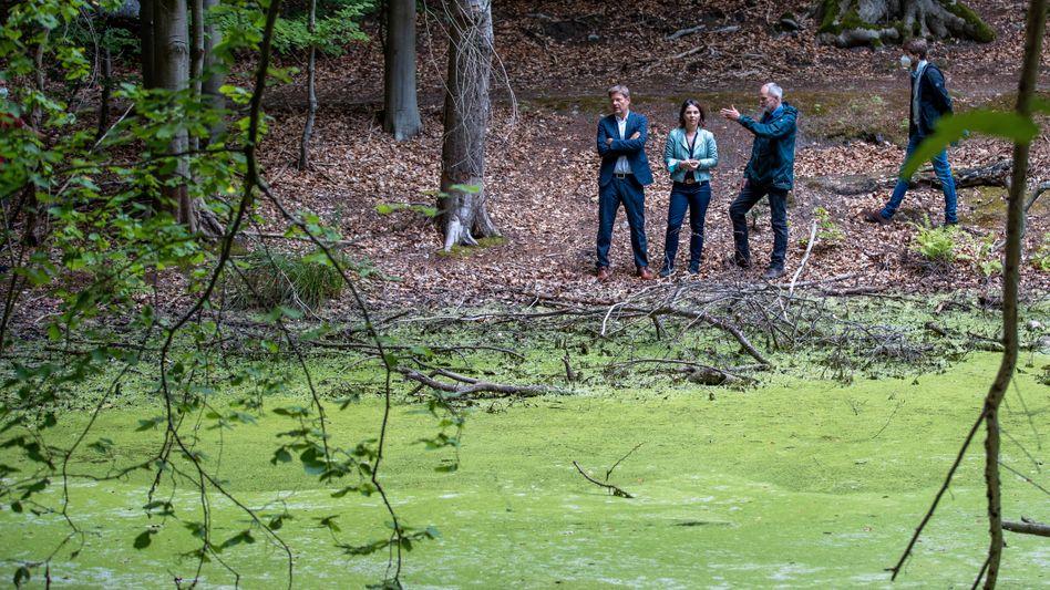 Kanzlerkandidatin Baerbock (M.) bei Führung durch Naturschutzgebiet in Brandenburg