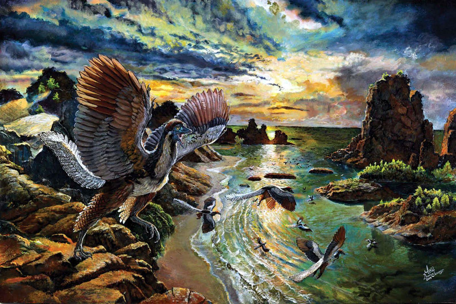 EINMALIGE VERWENDUNG Archaeopteryx albersdoerferi