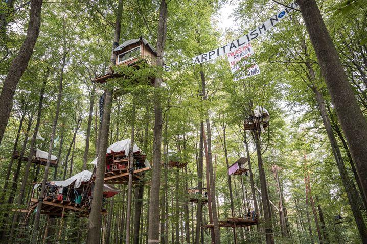 Baumhäuser von Waldschützern im Dannenröder Forst, 4. Oktober 2020