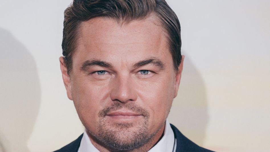 """Schauspieler und Umweltaktivist Di Caprio: """"Sie hätten es verdient, unterstützt zu werden"""""""