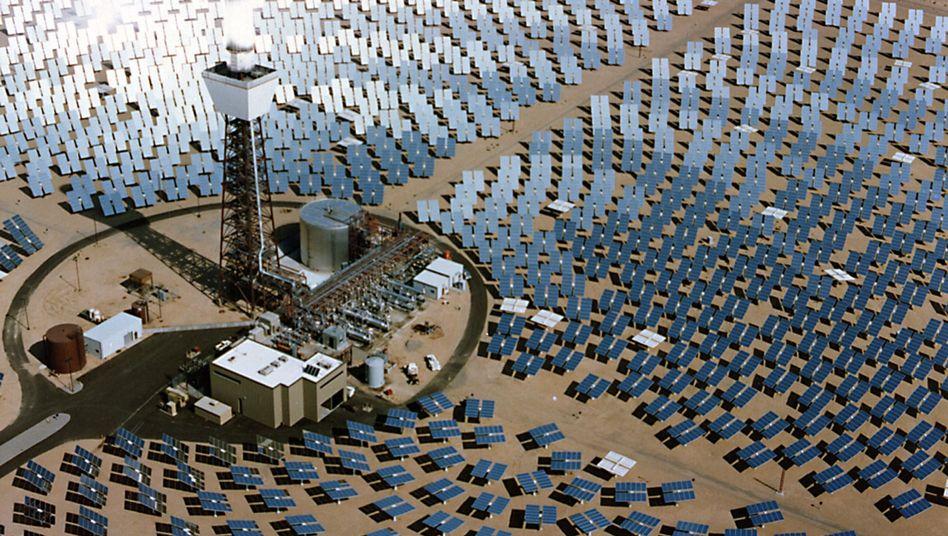 Solarkraftwerk in der kalifornischen Wüste: Die Branche leidet unter Preisverfall