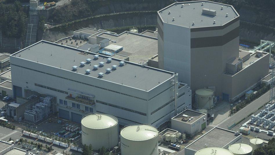 Das AKW Tsuruga an der Westküste Japans: Probleme mit den Brennstäben