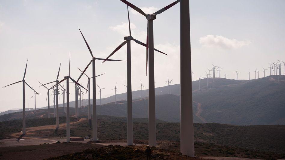 Windpark bei Tanger in Marokko: In zwei Jahren könnte Strom nach Europa fließen