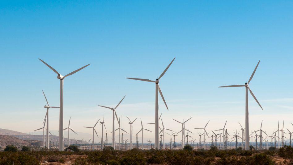 Windräder in Palm Springs, Kalifornien: Der neue US-Präsident Joe Biden will die USA zu einer führenden Nation im Kampf gegen die Erderwärmung machen