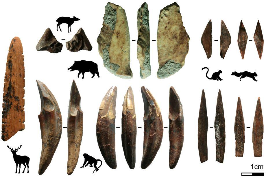 Werkzeuge aus Knochen und Zähnen, Pfeil- und Speerspitzen rechts im Bild