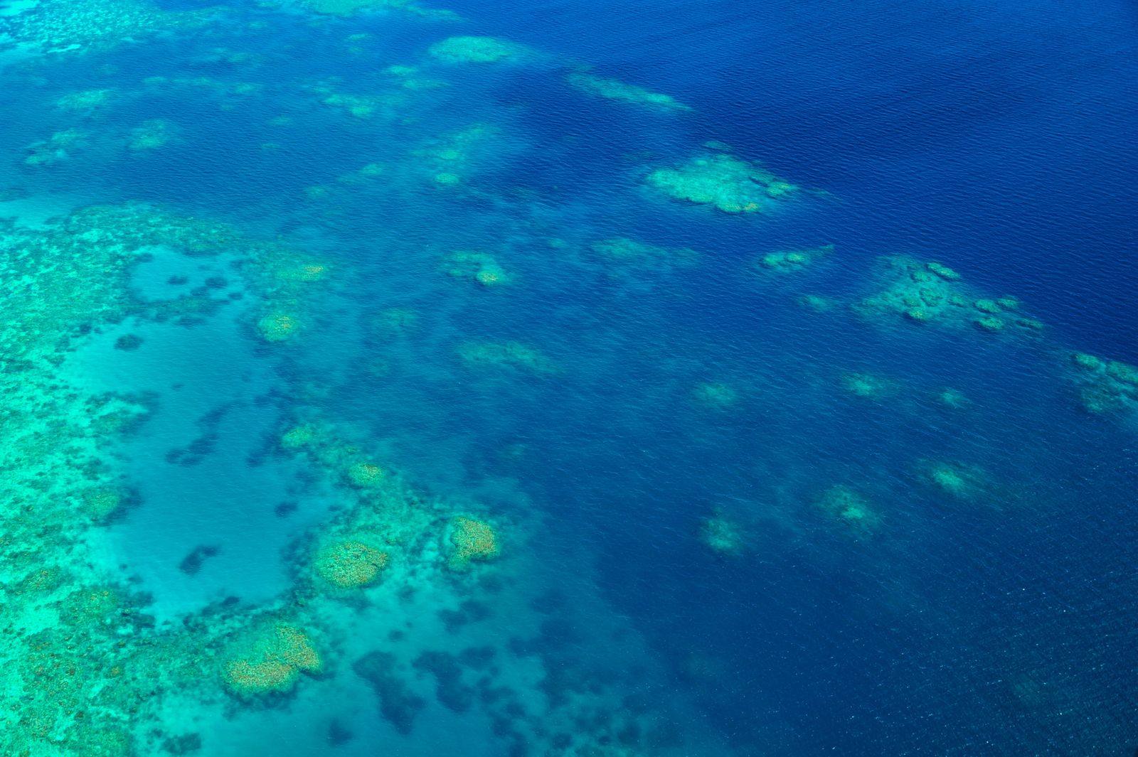 Great Barrier Reef, Coral Reef, Island, Overhead, Aerial, Panorama PUBLICATIONxNOTxINxCHN 195564575607226416
