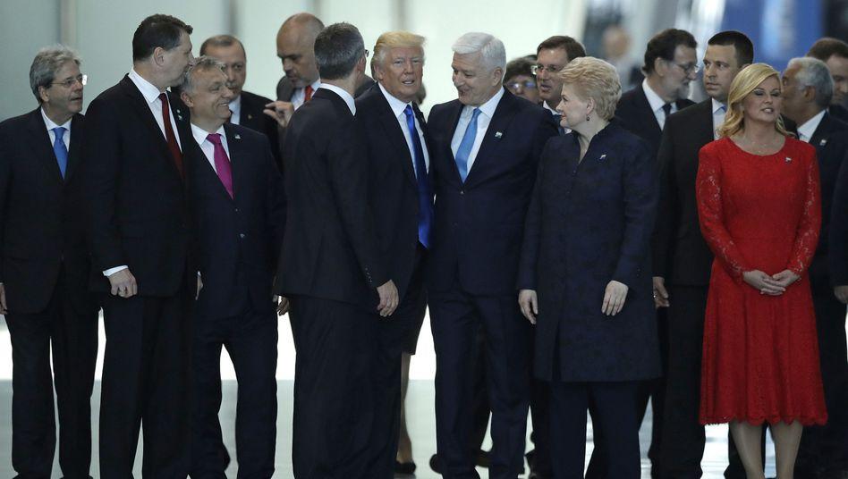 Donald Trump und die Nato-Regierungschefs