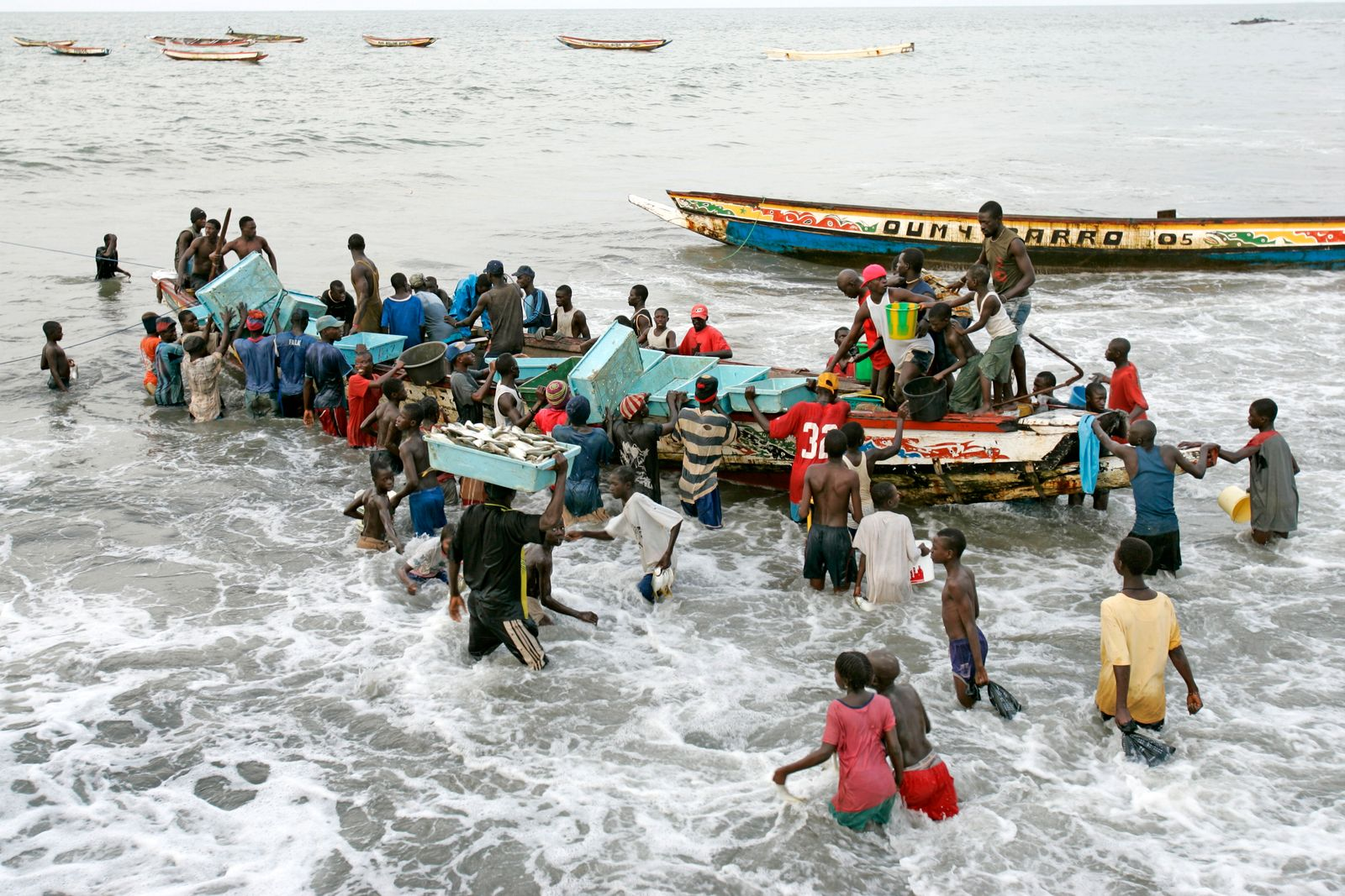Young men wade in surf unloading fishing boat Bakau The Gambia CopyrightxAndrewxJxWoodley 4044_19_catch03_r8q1788