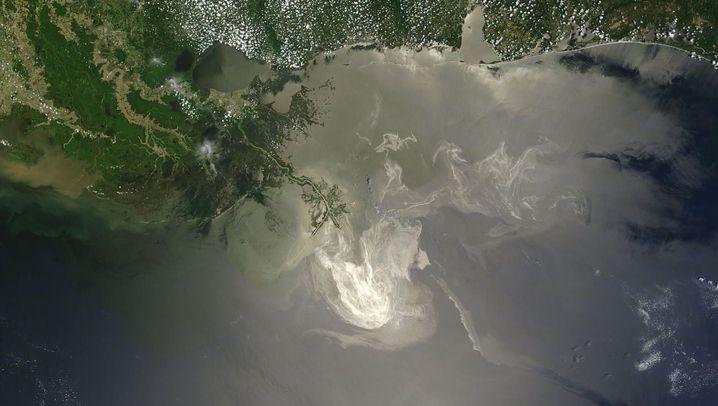 Golf von Mexiko: Die schwarze Flut erreicht die Küste