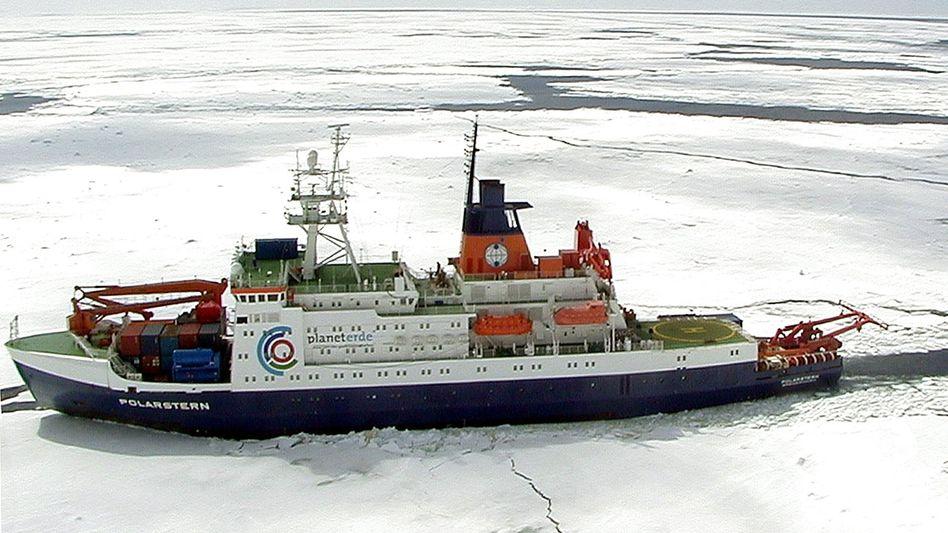 """""""Polarstern"""" in der Antarktis (im Dezember 2001): """"Düngungsfleck so groß wie ein Gänseblümchen"""""""