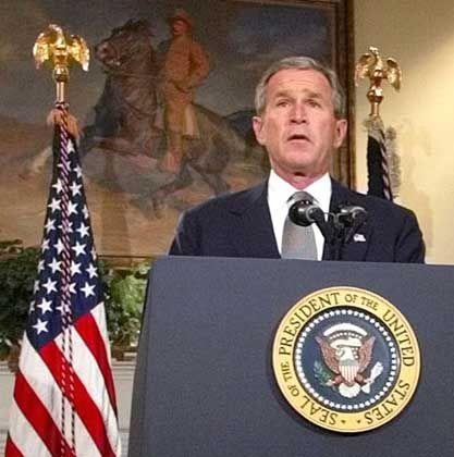 George W. Bush nach dem Abstimmungs- erfolg: Vollmacht für den Angriff