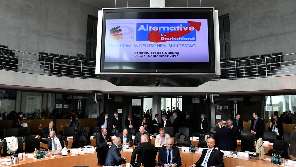 Photo Gallery: The AfD Set to Enter the Bundestag