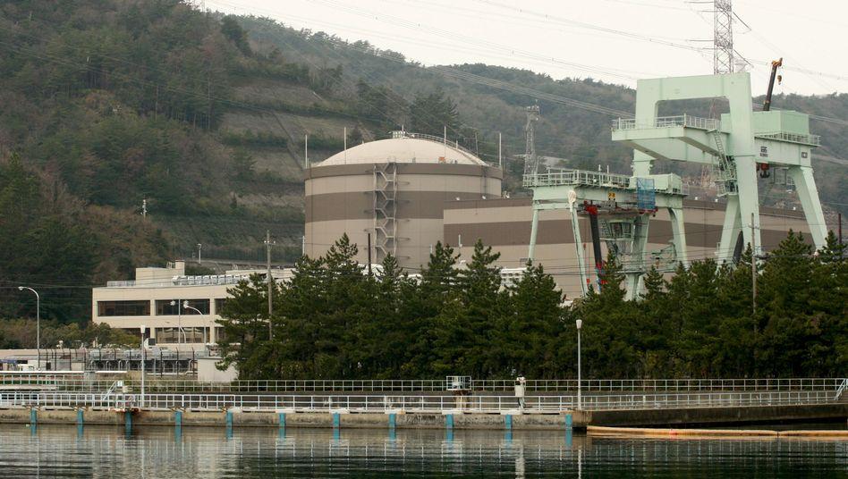 Tsuruga in Japan: Hier könnte ein Erdbeben drohen