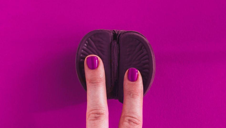 """Viele Forscher machen die Vernachlässigung der Klitoris für den """"orgasm gap"""" verantwortlich - aber nicht nur"""