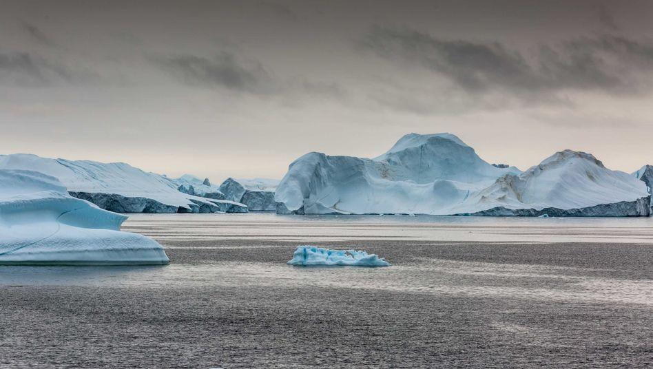 Grönland: Wenn das Meereis schwindet, erhitzt sich die Atmosphäre umso rasanter