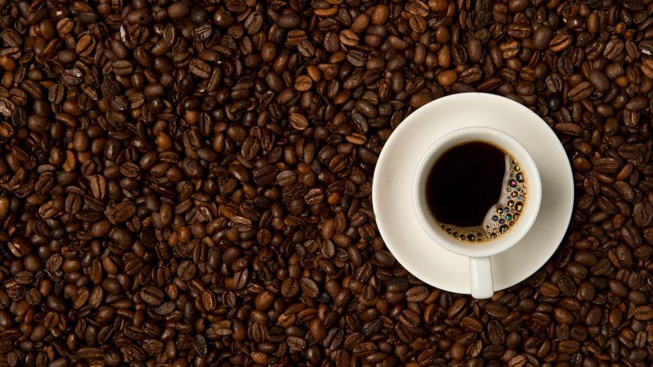 Der Preis für Kaffee könnte um bis zu einen Euro pro Pfund steigen