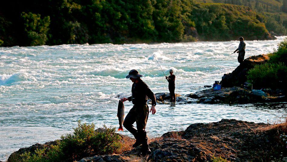 Angler am Newhalen River: Die Pebble-Mine könnte die Flusslandschaft im Süden Alaskas gefährden