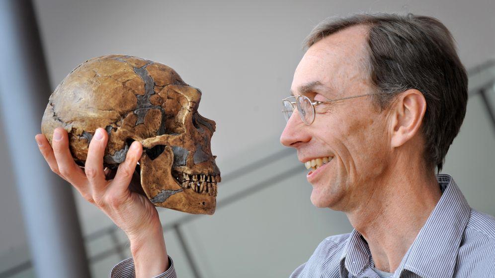 Knochenfunde: Ein Fitzelchen Neandertaler in uns