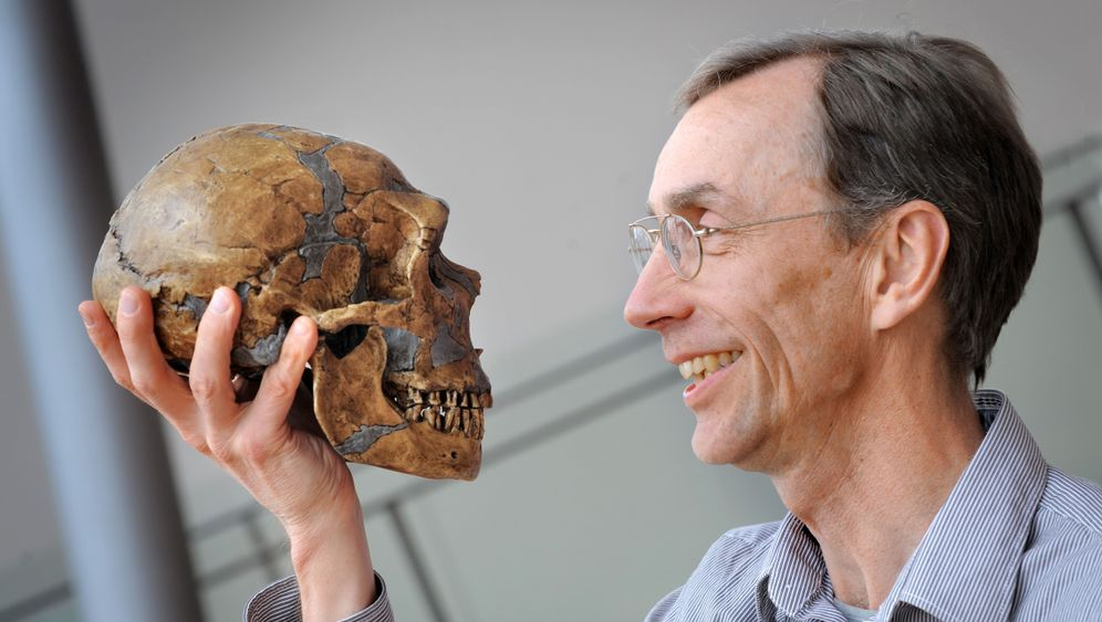 Photo Gallery: A Bit of Neanderthal in All of Us