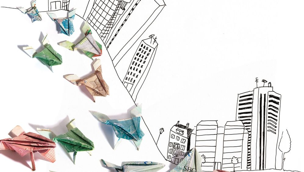 Ethische Banken: Die Krötenwanderung
