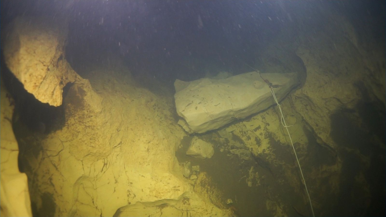 EINMALIGE VERWENDUNG Neuentdeckung/ Höhlenfisch/ Aachhöhle