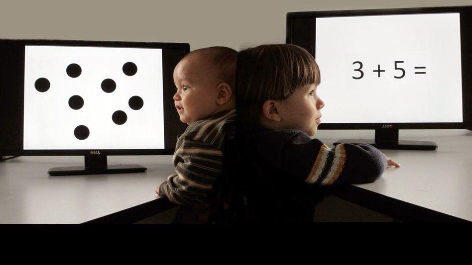 Experiment: Mengenverständnis von Säuglingen verrät spätere Rechenkünste