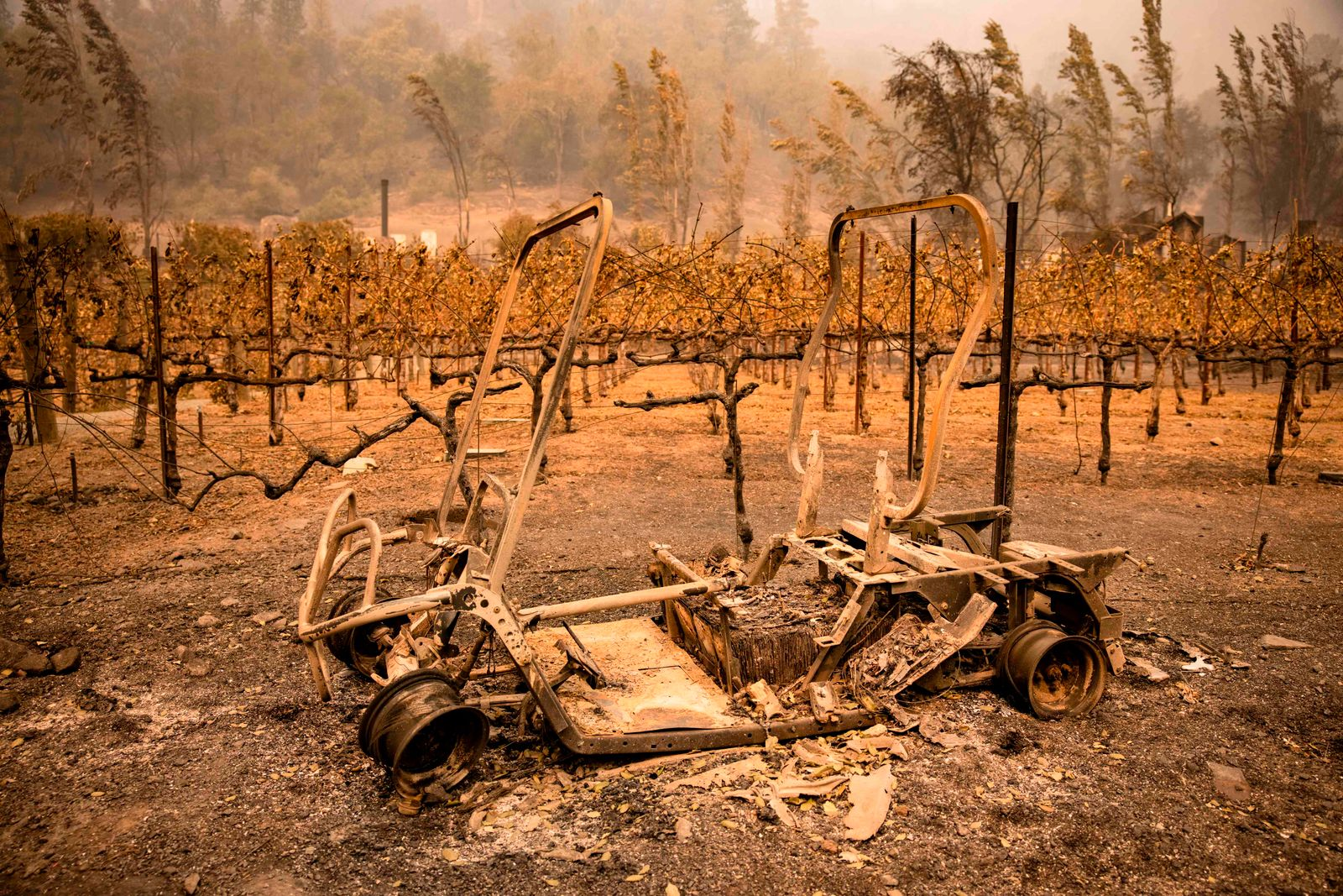 Glass Fire Burns in Napa Valley