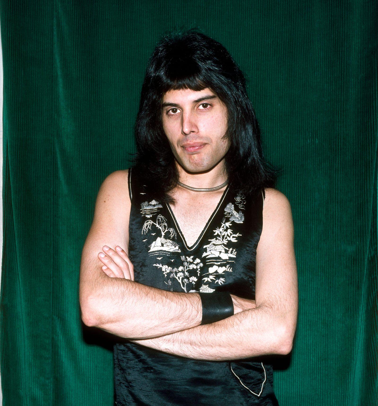 Portrait Of Freddie Mercury