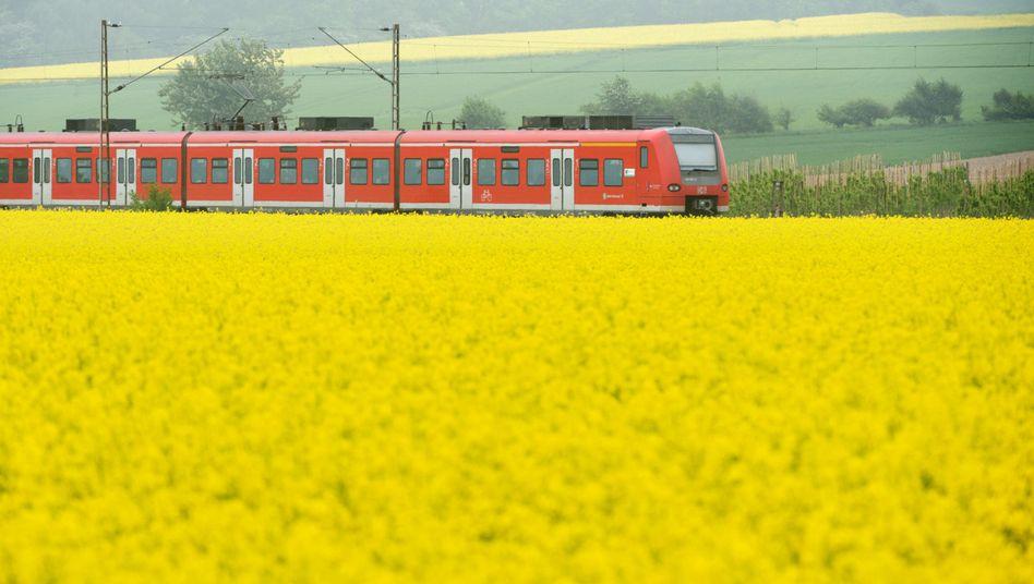 Regionalzug: Zehn Milliarden Passagiere waren 2014 mit Bus und Bahn unterwegs