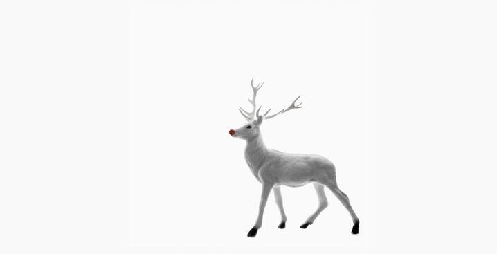 Rentier Rudolph