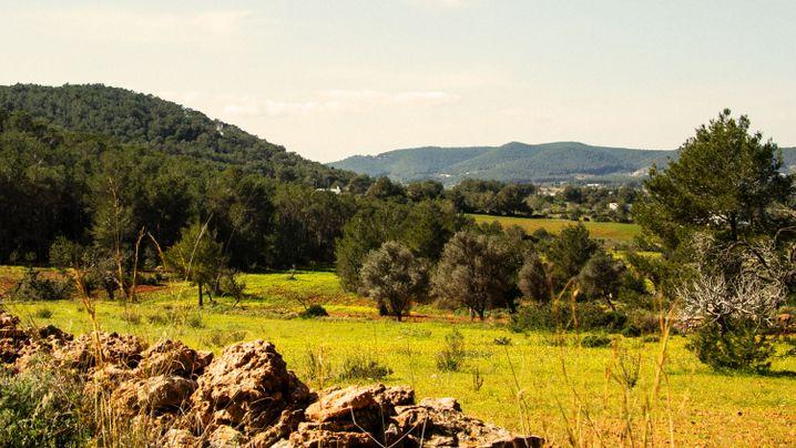 Ibiza: Eins mit der Natur