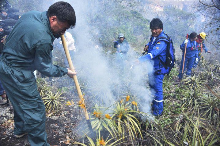 Evo Morales in einem Waldbrandgebiet im Osten Boliviens: Nur Show?